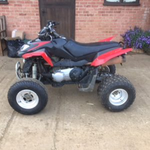 Arctic Cat 300cc DVX road legal quad bike